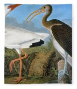 Audubon: Ibis Fleece Blanket