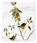 Audubon: Kinglet, 1827 Fleece Blanket