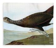 Audubon: Limpkin Fleece Blanket