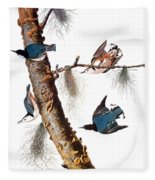 Audubon: Nuthatch Fleece Blanket