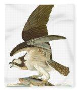 Audubon: Osprey Fleece Blanket