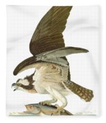 Audubon: Osprey Fleece Blanket