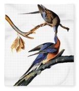 Audubon: Passenger Pigeon Fleece Blanket