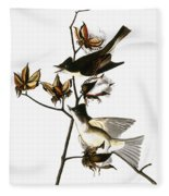 Audubon: Phoebe Fleece Blanket