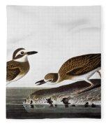 Audubon: Plover, 1827-38 Fleece Blanket