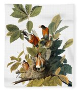 Audubon: Robin Fleece Blanket