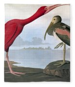 Audubon: Scarlet Ibis Fleece Blanket