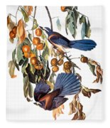 Audubon: Scrub Jay, 1827-38 Fleece Blanket
