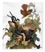 Audubon: Thrasher Fleece Blanket