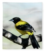 Audubon's Oriole Back Wings Fleece Blanket