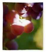 Auntie Thelma's Grapes - Ripening Fleece Blanket