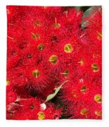 Australian Native Eucalyptus Flowers Fleece Blanket