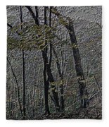 Autumn 2015 Panorama In The Woods Pa 01 Fleece Blanket