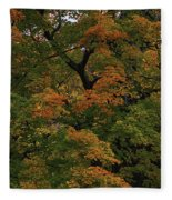 Autumn Arrives Fleece Blanket