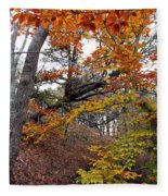 Autumn At Beech Forest Fleece Blanket