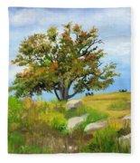 Autumn At Gettysburg Fleece Blanket