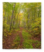 Autumn Birch Woods Fleece Blanket