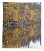 Autumn Birches On The Shore Of Lake Fleece Blanket