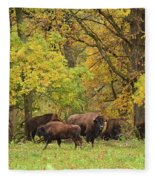 Autumn Bison Fleece Blanket
