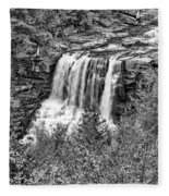 Autumn Blackwater Falls Bw Fleece Blanket