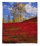 Autumn Birches And Barrens Fleece Blanket