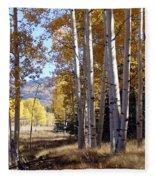 Autumn Chama New Mexico Fleece Blanket