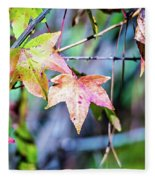 Autumn Color Changing Leaves On A Tree Branch Fleece Blanket