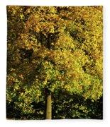 Autumn Colors 8 Fleece Blanket