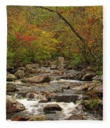 Autumn Colors On Pickle Creek 2 Fleece Blanket