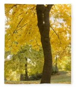 Autumn Dance Fleece Blanket