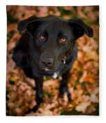 Autumn Dog Fleece Blanket