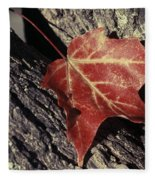 Autumn Find Fleece Blanket