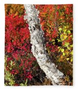 Autumn Foliage In Finland Fleece Blanket