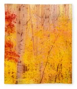 Autumn Forest Wbirch Trees Canada Fleece Blanket