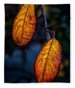 Autumn Gradation Fleece Blanket