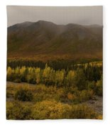 Autumn In August Brooks Range Alaska Fleece Blanket