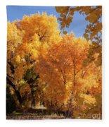 Autumn In Curtin Fleece Blanket