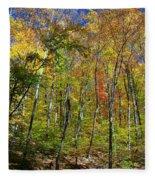 Autumn In Schooley's Mountain Park 2 Fleece Blanket