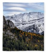 Autumn In Switzerland Fleece Blanket
