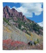 Autumn In The Aspen Hills Fleece Blanket