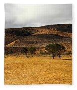Autumn In The High Desert Fleece Blanket