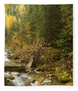 Autumn In The St Joe Fleece Blanket