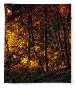 Autumn In The Woods Fleece Blanket