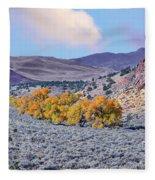 Autumn Landscape In Northern Nevada. Fleece Blanket