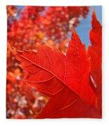 Autumn Leaves Fall Art Red Orange Leaves Blue Sky Baslee Troutman Fleece Blanket
