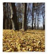 Autumn Maple Forest - Massachusetts Usa Fleece Blanket