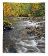 Autumn Meander Fleece Blanket
