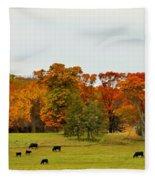 Autumn Minnesota Black Angus Cattle Fleece Blanket