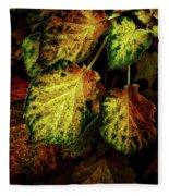 Autumn Motif Fleece Blanket