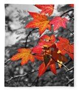 Autumn On Black And White Fleece Blanket
